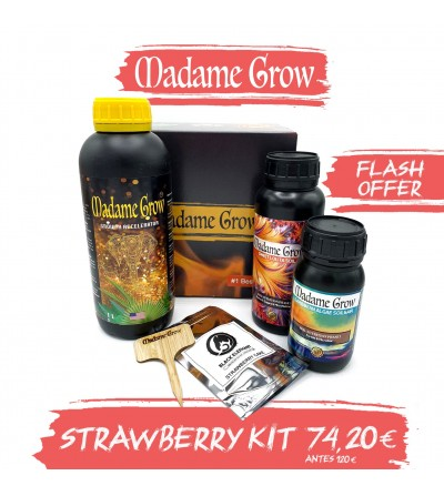 STRAWBERRY KIT OFFRE