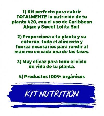 engrais nutritionnels et énergétiques