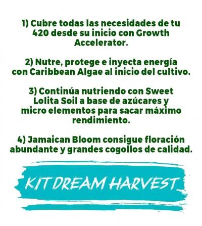 mejores abonos para nutrición, crecimiento y floración