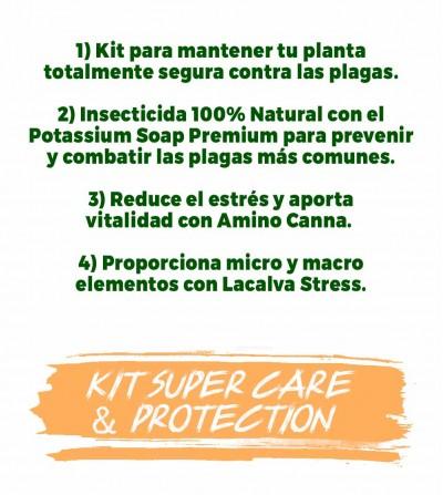 compost per curare le piante