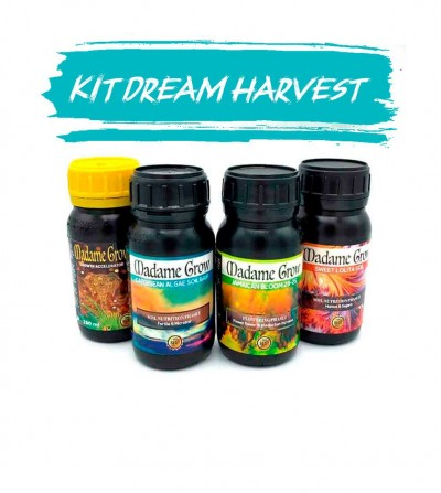 KIT 4 DREAM HARVEST - PACK MADAME GROW