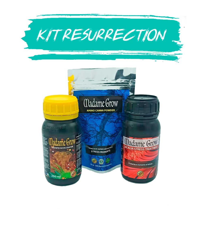 biofertilisants pour la revégétalisation 420